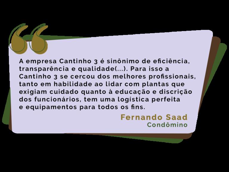 Fernando-Saad_2.png